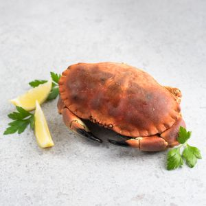 Whole Cooked European Brown Crab