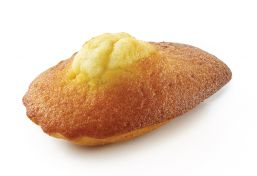 Madeleine Large Pure Butter
