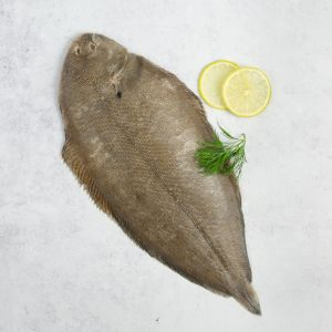 Whole French Dover Sole, Wild